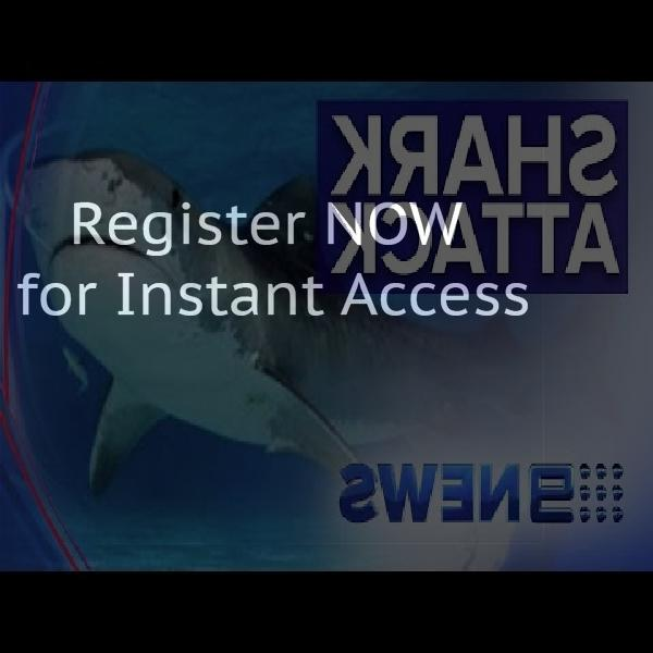 Free classified ad placement in Australia
